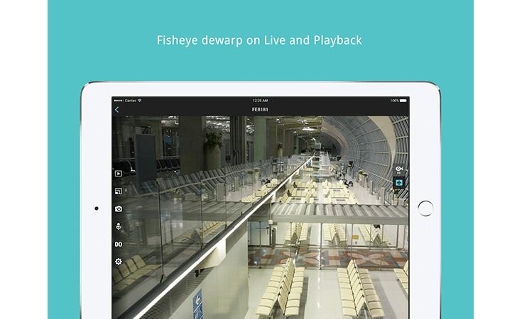 iviewer fisheye dewarp